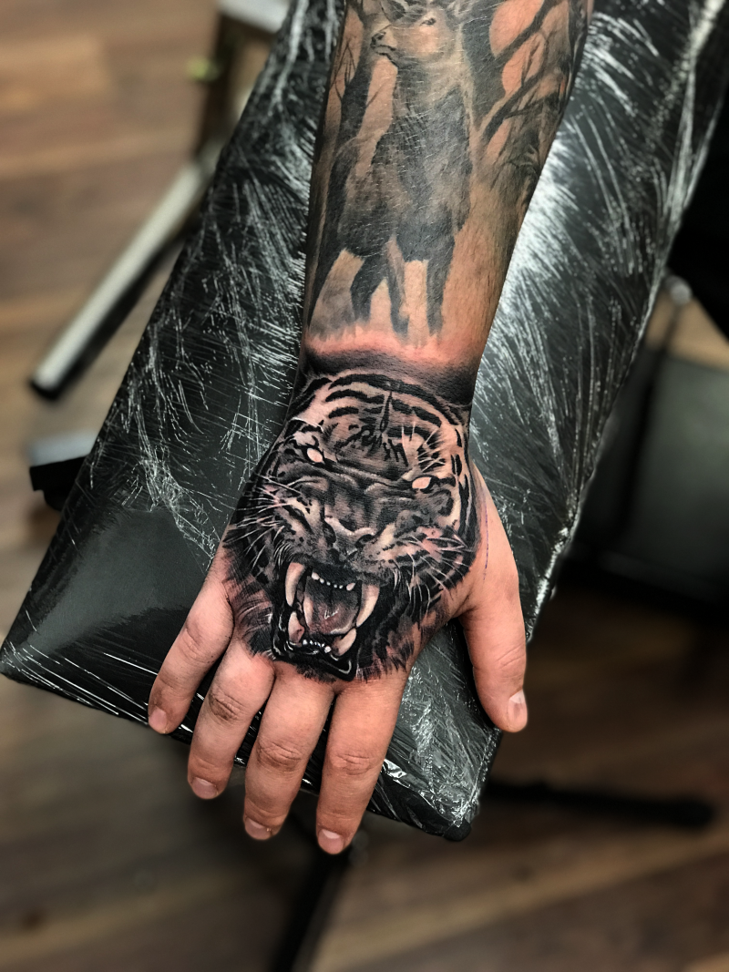 Tiger on hand